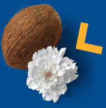 Kokos i kwiat na niebieskim tle