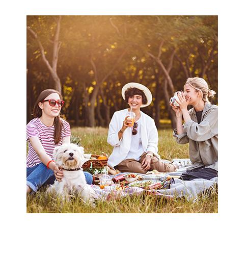 Piknik skámoškami